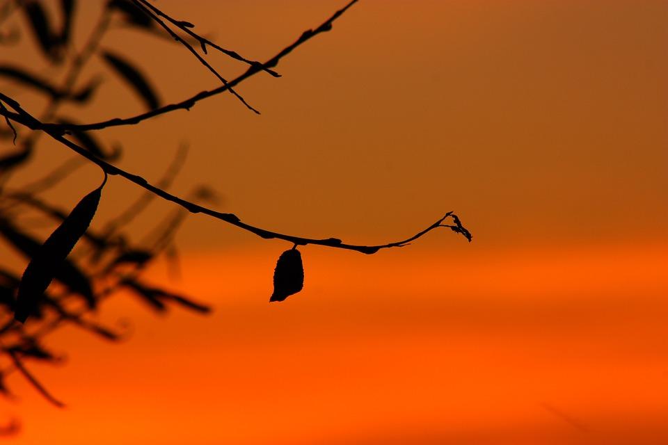 silhouette-251693_960_720